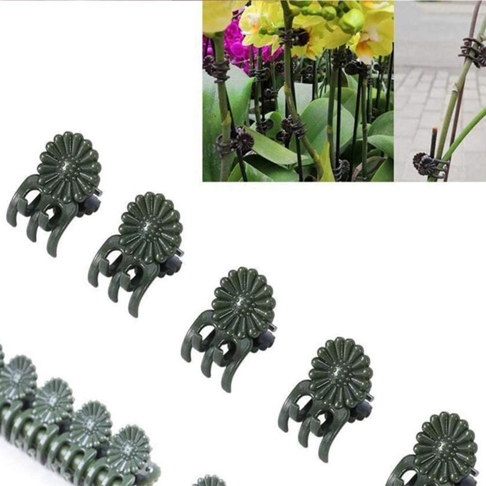 Mrinb 50pcs Plastic Plant Support Clips Orchid Clips Plant Orchid Support Clips Orchid Stem Clip for Supporting Stems Vines Grow Upright