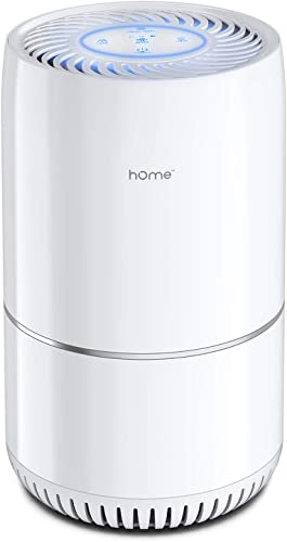hOmeLabs Air Purifier for Home, Bedroom or Office – True HEPA H13 Filter to Remove Allergens Such as Mold, Dust, Dander – Pet Smell and Smoke Odor Eliminator – Night Light and Child Lock Function