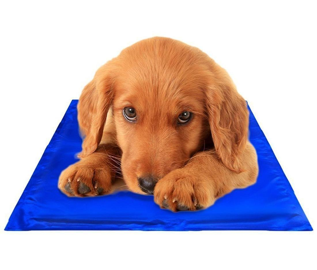 Huihuger Pet Blanket Letto Dog Cat Ice Mat Dare ai Pet un'estate Fresca Facile da Pulire Resistente Resistente ai Graffi e ai Graffi XS 40  30cm