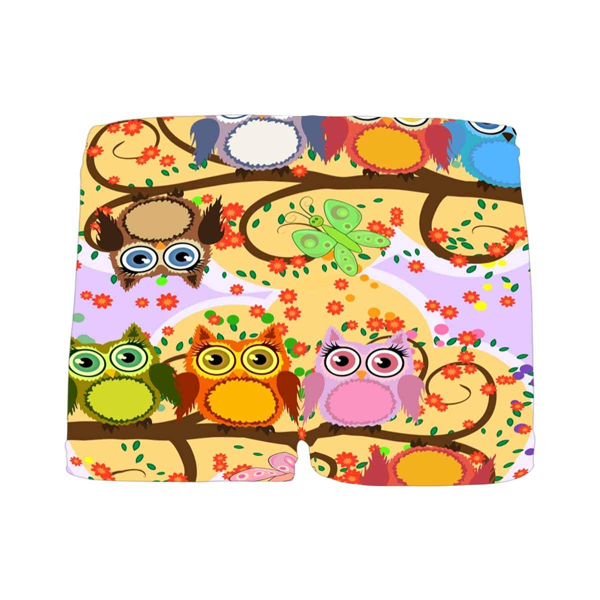INTERESTPRINT Boys Cartoon Cute Colorful Owls on a Flowering Tree Branch All Over Print Boxer Briefs 5T-2XL