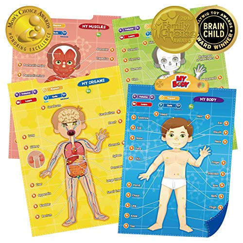 BEST LEARNING i-Poster My Body - Interactive Educational Human Anatomy Talking Game Toy System to Learn Body Parts, Organs, Muscles and Bones for Kids Aged 5 to -