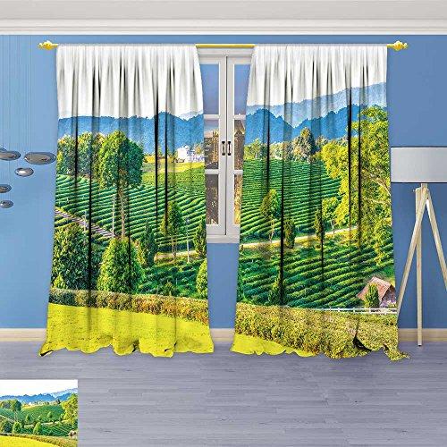 SOCOMIMI Window Treatments Landscape Tea Farm in Thai Thailand Living Room Bedroom Curtain 2 Panels Set 120W x 96L inch