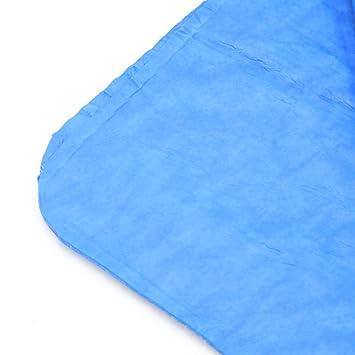 Amazon.com: eDealMax Azul sintético Gamuza auto del coche de Cristal ...