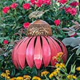 100% Powder Coated Steel Coneflower Bird Feeder, Pink