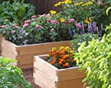Rectangle Cedar Raised Garden Bed Kit, 24 by 72 by 16.5-inch height