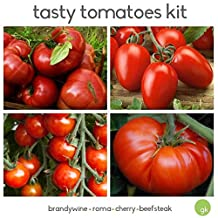 Save 50%! TASTY TOMATOES SEED Kit - 4 Different Types - Beefsteak, Chery, Brandywine, Roma Plum - Fresh Seed - Heritage Vegetable Garden