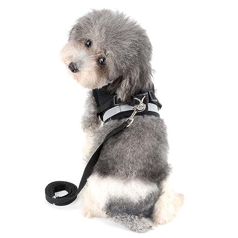 Ranphy Arnés de Malla Reflectante, Ajustable, Suave, para Perros y Gatos Pequeños,