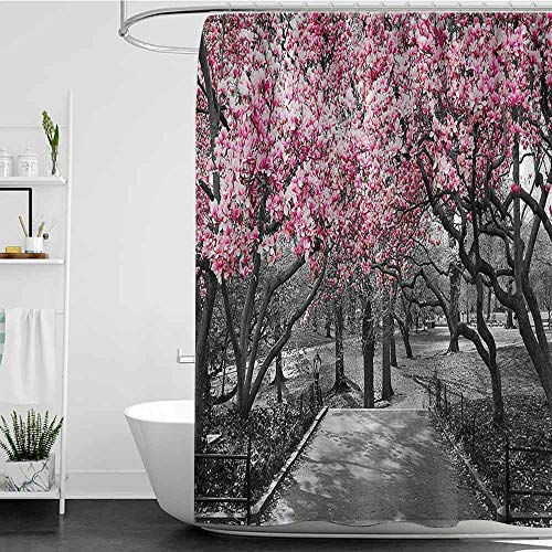 Shower Curtains for Bathroom Dog NYC Decor Collection,Blossoms in Central Park Cherry Bloom Trees Forest Spring Springtime Landscape Picture,Pink Gray W48 x L72,Shower Curtain for Kids -