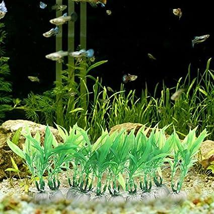 Daxibb Plantas acuáticas Dabixx decoración del Ornamento del Tanque de Peces de Acuario 10 Piezas de