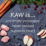 Instinct Raw Boost Indoor Health Grain Free Recipe