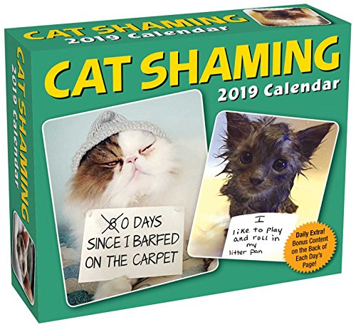 Cat Shaming 2019 Day-to-Day Calendar (Xmas Photos Awkward)