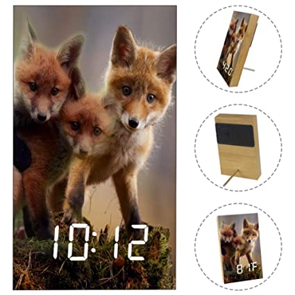 Amazon.com: Yuzheng Three Fox Digital Alarm Clock with ...