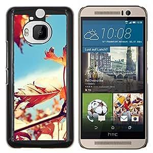Stuss Case / Funda Carcasa protectora - Soleado Árbol Hojas Hermosa - HTC One M9+ M9 Plus