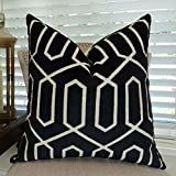 Thomas Collection handmade decorative pillows, sofa throw pillow, Black Velvet Luxury Throw Pillow, Taupe Geometric Key Trellis Designer Pillow, INCLUDES POLYFILL INSERT, Made in USA, 11388