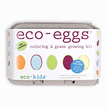 Amazon.com : Eco-Eggs Coloring Kit : Childrens Arts And Crafts Kits ...