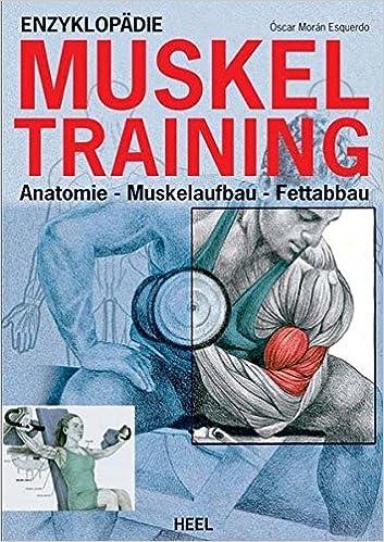 Enzyklopädie Muskeltraining: Anatomie - Muskelaufbau - Fettabbau ...