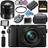 Panasonic Lumix DC-GX9 Mirrorless Micro Four Thirds Digital Camera with 12-60mm Lens (Black) + Panasonic Lumix G Vario 14-140mm f/3.5-5.6 ASPH. POWER O.I.S. Lens (Black) Bundle