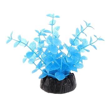 Daxibb Plantas Acuáticas Plantas Plástico Azul Brillante Submarino Casa Pecera Decoración Acuario: Amazon.es: Hogar