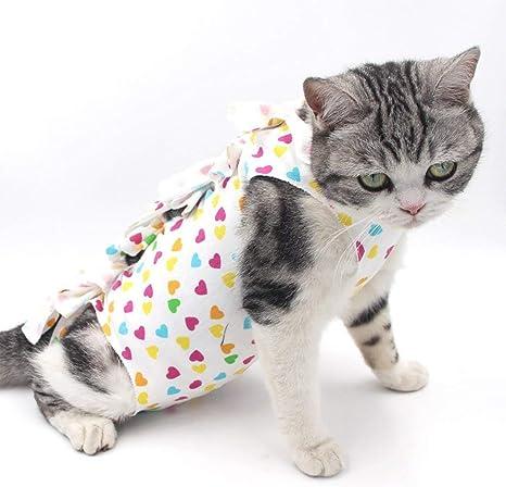Lightton - Abrigo Protector para Mascotas, Traje de recuperación para Mascotas, Gatos, Perros, después de cirugía, Traje de recuperación de ...