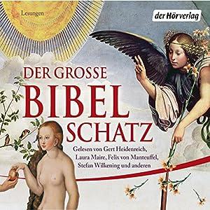 Der große Bibelschatz Audiobook