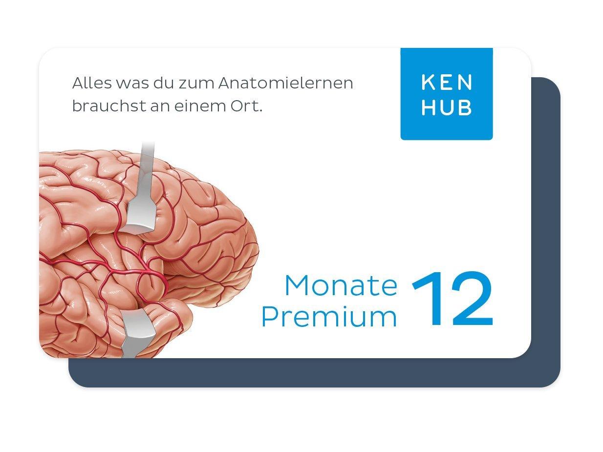 Kenhub - Anatomie Lernprogramm für Mediziner, Physio- und ...