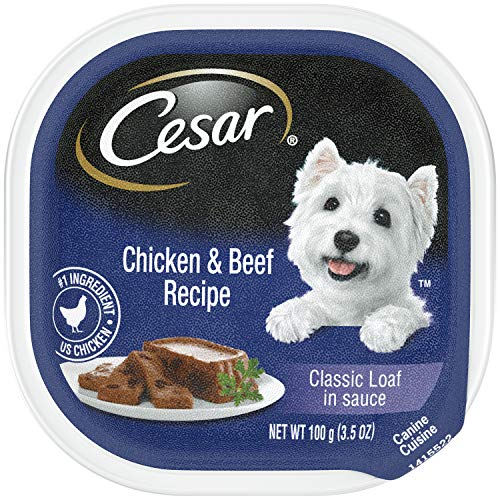 (CESAR Wet Dog Food Classic Loaf in Sauce Chicken & Beef Recipe, (24) 3.5-oz Trays)