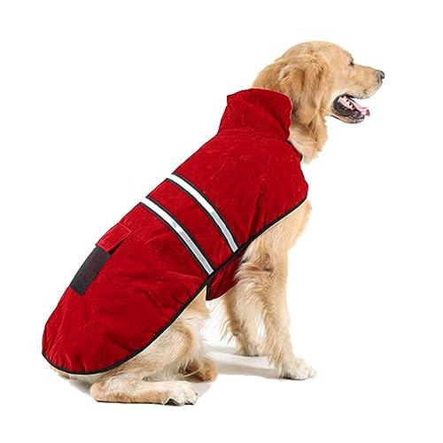 Labrador Winter Coat Amazon Co Uk