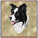 Pure Country 1123-LS Border Collie Pet Blanket, Canine on Beige Background, 54 by 54-Inch