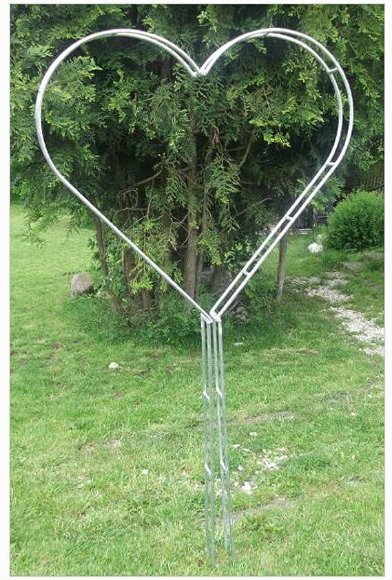 EQT-TEC - Pérgola para Plantas trepadoras (170 cm, Acero Inoxidable): Amazon.es: Jardín