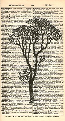 BARE TREE ART PRINT - VINTAGE ART PRINT - Black & White, used for sale  Delivered anywhere in Canada