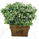 artificial evergreen bushes - 2pcs Bundles Artificial Plastic Plants Aglaia Odorata Lour Evergreen Shrubs Outdoor UV Stable Subtropical Green Bushes Home Garden Tabletop Floral Arranging Decor (White)