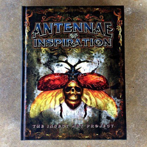 Antennae Inspiration Insect Art Project