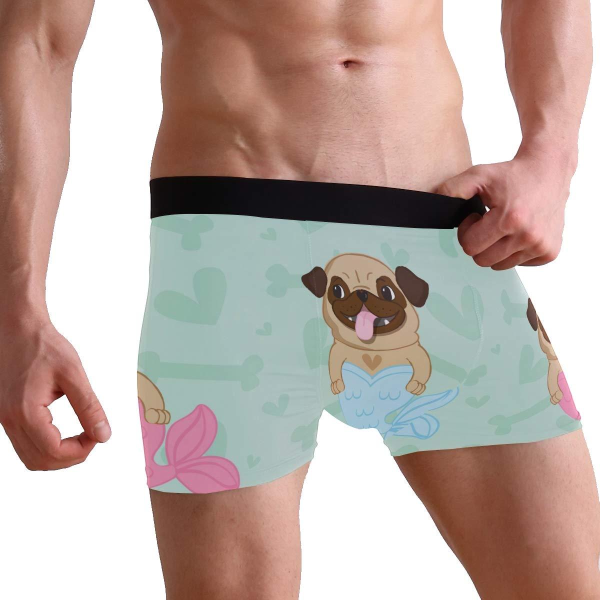 Mens Underwear French Dog Boys Boxer Brief
