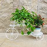 CSQ Creative Wrought Iron Flower Stand, Bicycle Shape Pretty Pattern Double Layer Plant Stand Desktop Bedroom Living Room Balcony Indoor Black & White Flower Shelf