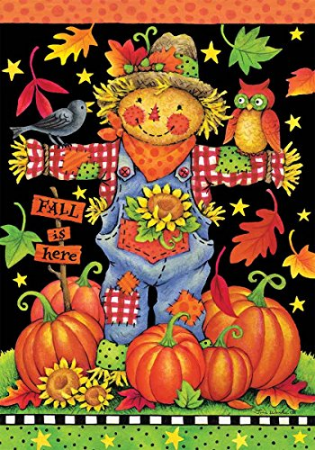 Scarecrow Pumpkin (Scarecrow and Pumpkins - Fall Garden Size, 12 Inch X 18 Inch Decorative)