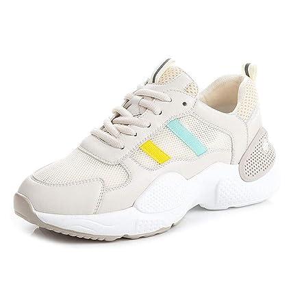 Chaussures décontractées pour dames : Meilleures chaussures