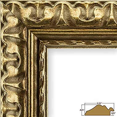 Craig Frames 21247906 24 by 30-Inch Picture Frame, Ornate Finish, 2.031-Inch Wide, Bronze and Gold