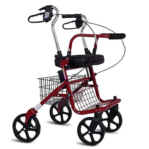 Andador Caminantes peatones Que conducen vehículos en carros de ...