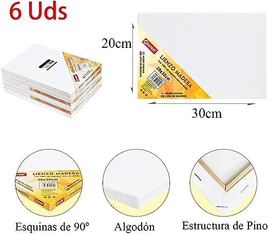ALLPER Pack de 6 lienzos 20 x 30 cm de 100% algodón apto para óleo ...
