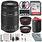 canon 60d package deal - Canon EF-S 55-250mm f/4-5.6 IS STM Lens Bundle with Telephoto Lens, Wide Angle Lens, 58mm Filters and Accessories - USA Warranty