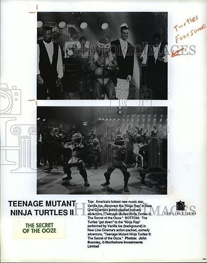 Amazon.com: 1991 Press Photo