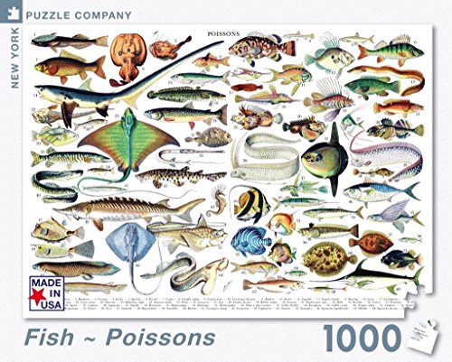 New York Puzzle Company Fish ~ Poissons - 1000 Piece Jigsaw Puzzle