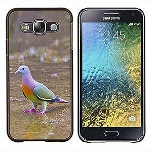 EJOOY---Cubierta de la caja de protección para la piel dura ** Samsung Galaxy E5 E500 ** --paloma pájaro tropical ornitología verde