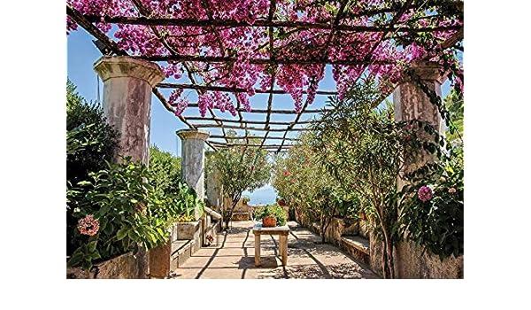 DekoShop AMD10334_MLVEN - Papel Pintado fotográfico Laminado, diseño de terraza con Flores, vellón, Magenta, Beige, Azul, Verde, MLV4 (254cm. x 184cm.): Amazon.es: Hogar