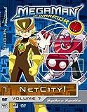 Megaman Nt Warrior Vol 7