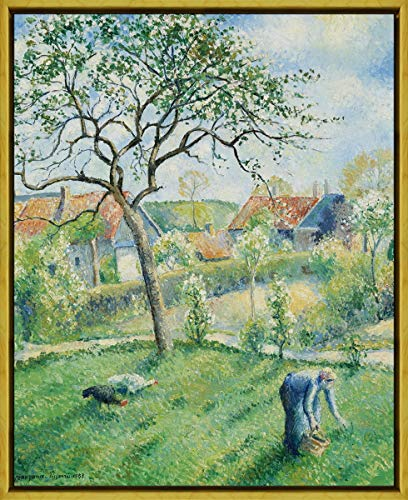 Berkin Arts Framed Camille Pissarro Giclee Canvas Print Paintings Poster Reproduction(Apple Trees in Bloom) #XLK