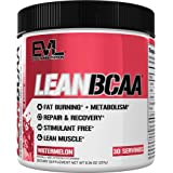 Evlution Nutrition LeanBCAA BCAA CLA And L-Carnitine Recover And Burn Fat Sugar And Gluten Free, 30 Servings (Watermelon)