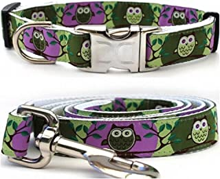 "product image for Diva-Dog 'H'Owl' Custom Small Dog 5/8"" Wide Grape & Avocado Dog Collar with Plain or Engraved Buckle, Matching Leash Available - Teacup, XS/S"