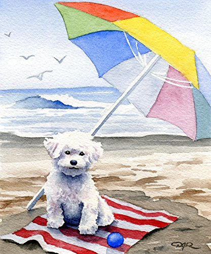 Bichon Frise at The Beach Art Print 11 x 14 by Watercolor Artist DJ Rogers
