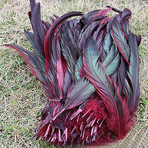Maslin Natural 20pcs/lot Bordeaux red Beautiful Rooster Feathers 27 to 35cm 11 to 14Inch